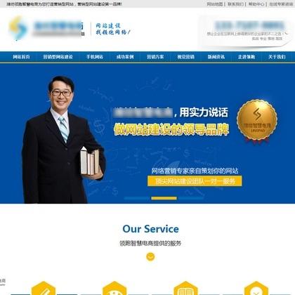 蓝色大气网站建设网络公司通用营销型织梦模板